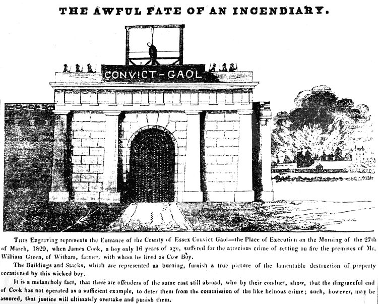 Drawing of the execution of James Cook from 1829